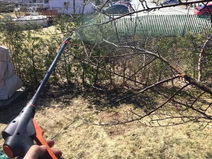 Comment empêcher les tâches sur les pommes
