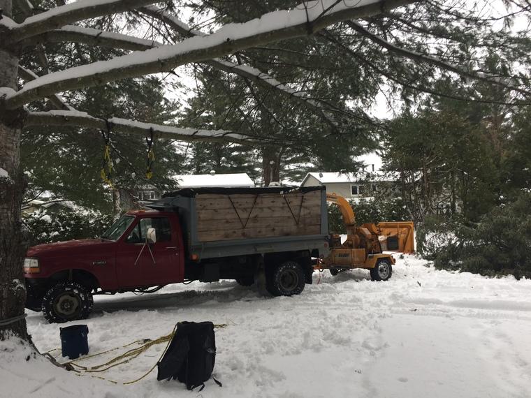 déchiquetage de branche à Sherbrooke