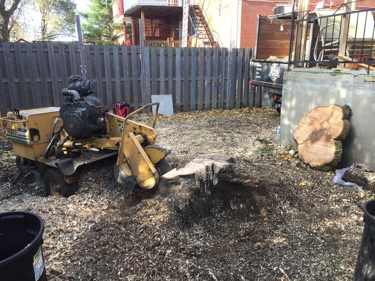 Dessouchage essouchage à Sherbrooke