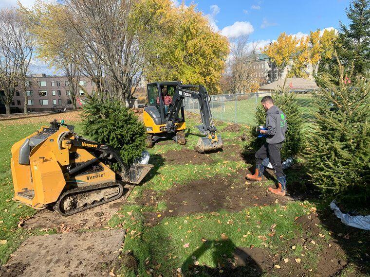Plantation d'arbres Sherbrooke